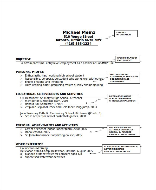 12+ Babysitter Resume Templates Free Printable Word  PDF Sample