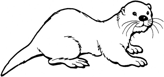 otter coloring page otter clipart otter coloring page 54015 sea otter - Otter Coloring Pages