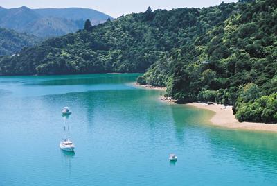 Marlborough Sounds, NZ