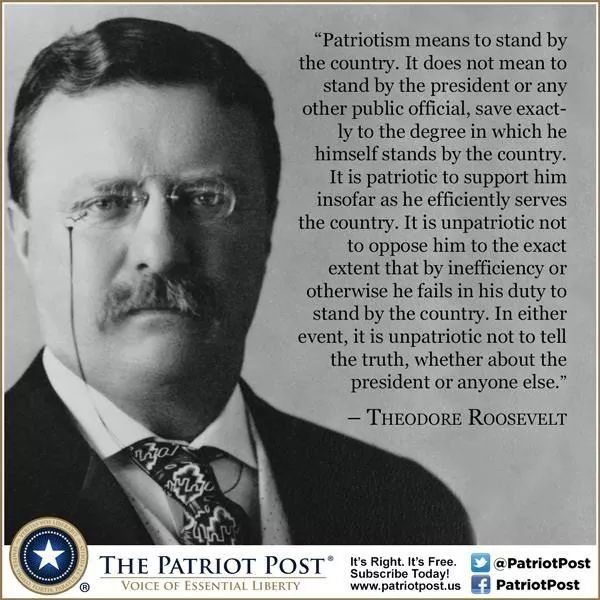 Theodore Roosevelt Founding Fathers Quotes Patriotic Quotes Roosevelt Quotes