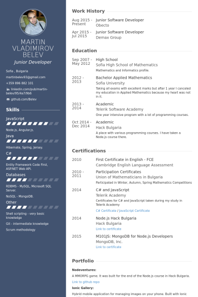 junior software developer resume example professional career