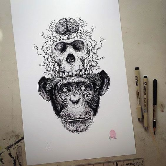 44075c31f50 Distinctive fabulous monkey with a skull and brain. Style  Black and Gray.  Color  Gray. Tags  Best