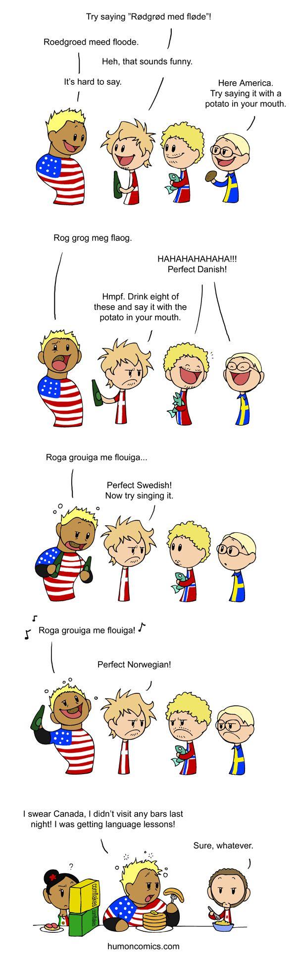 Language Lesson Scandinavia And The World Scandinavia Country Jokes Satw Comic