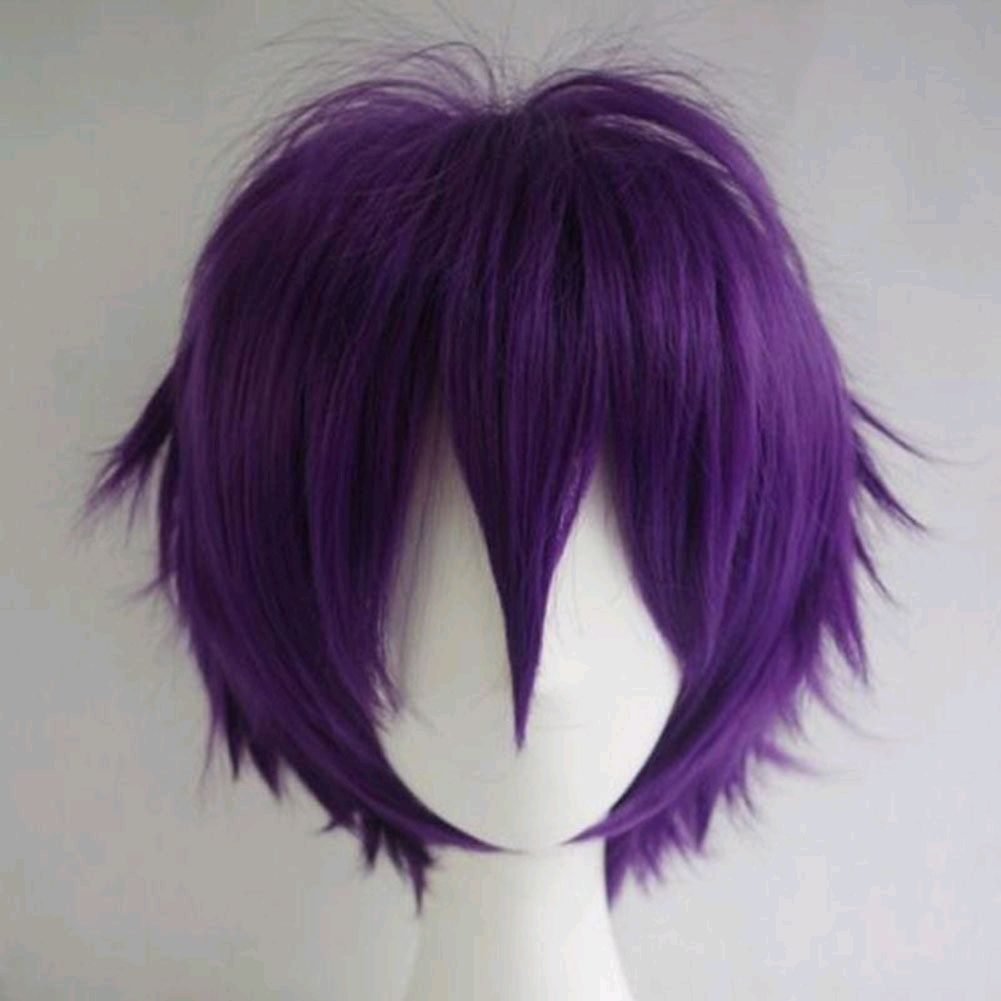 Unisex Men Women Straight Short Hair Wig Cosplay Party Anime Full Wigs Colors Best Lace Front Wigs Wig Hairstyles Short Hair Wigs