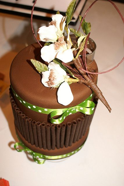 chocolate table cake - how awesome is the lime green ribbon