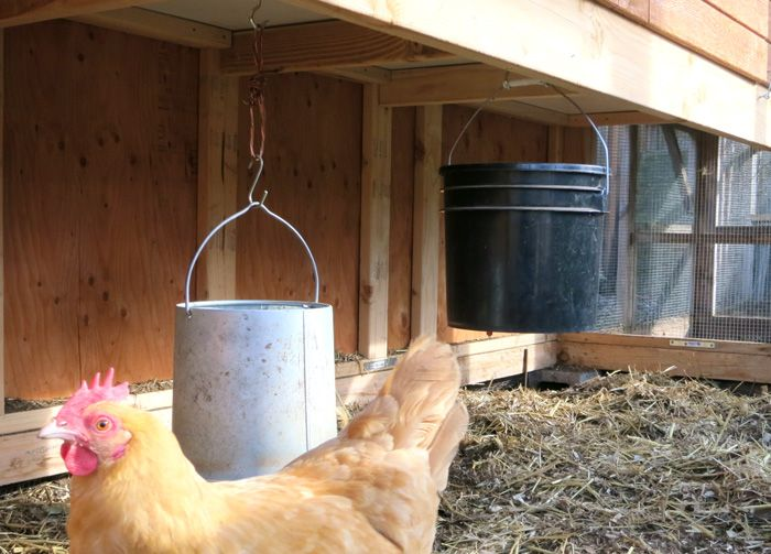 Fantastic Chicken Coops 2020 Designs Free Plans Ideas Large Chicken Coop Plans Chicken Coop Plans Walk In Chicken Coop