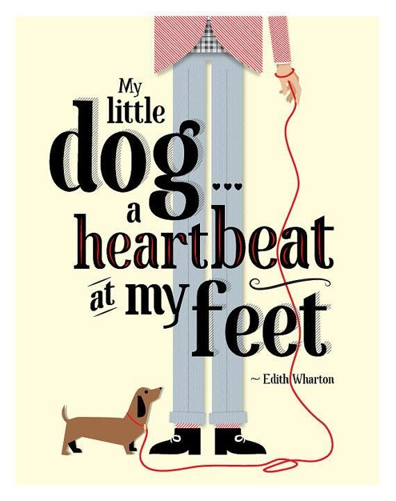 My Little Doga Heartbeat At My Feet Edith Wharton Via