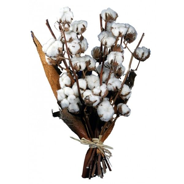 bouquet de fleurs de coton fleurs pinterest. Black Bedroom Furniture Sets. Home Design Ideas
