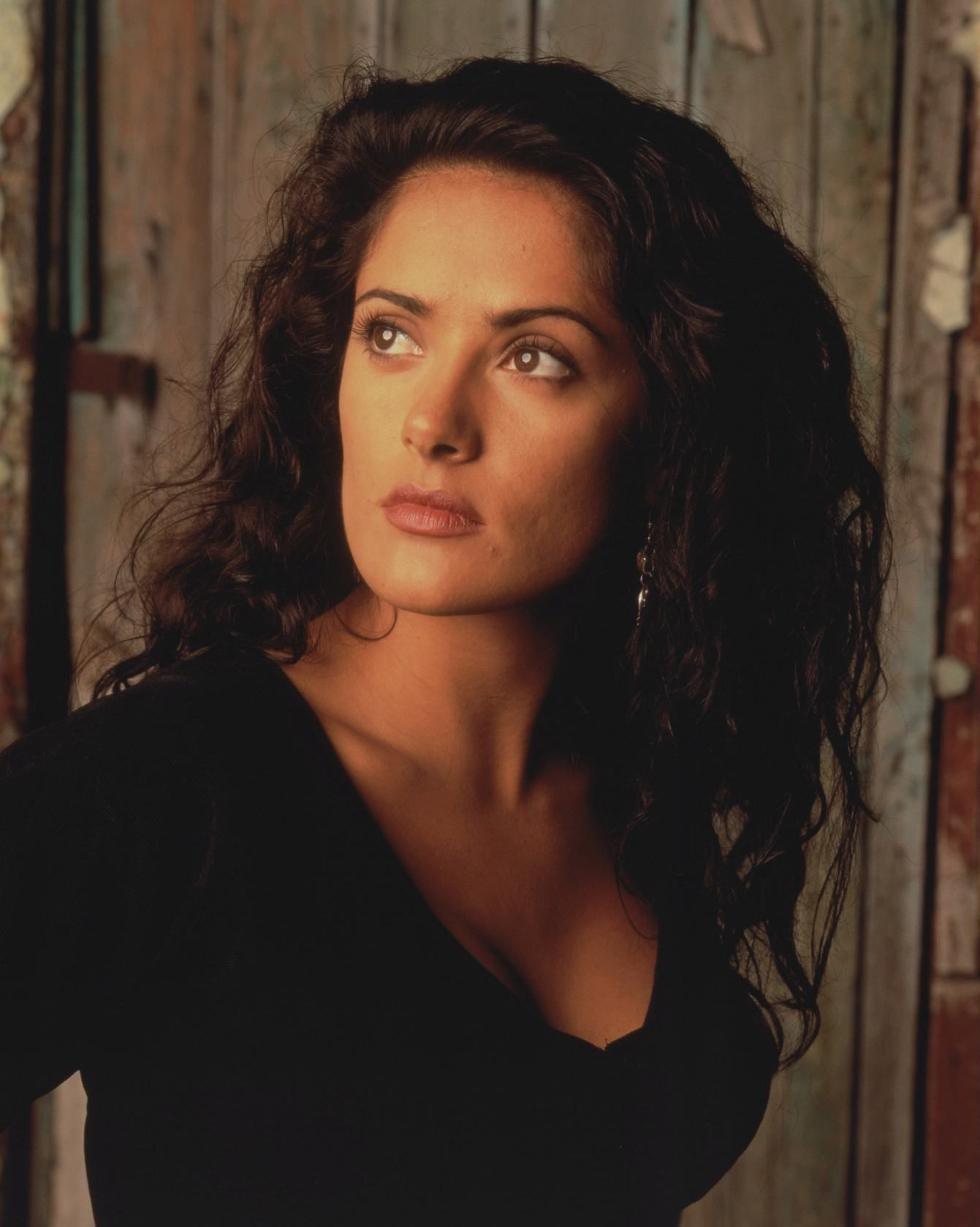 Salma Hayek - The Hollywood Archive