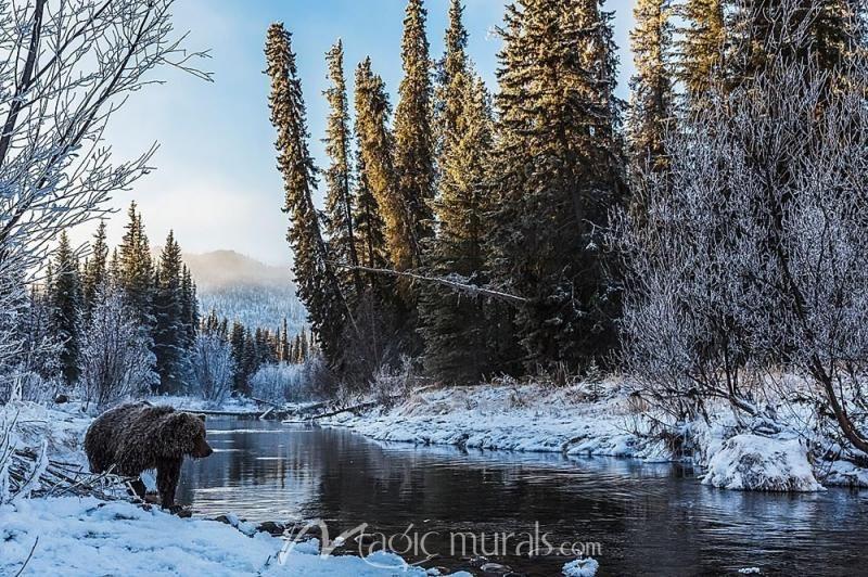 Grizzly Bear Landscape Landscape Wallpaper Landscape Grizzly Bear