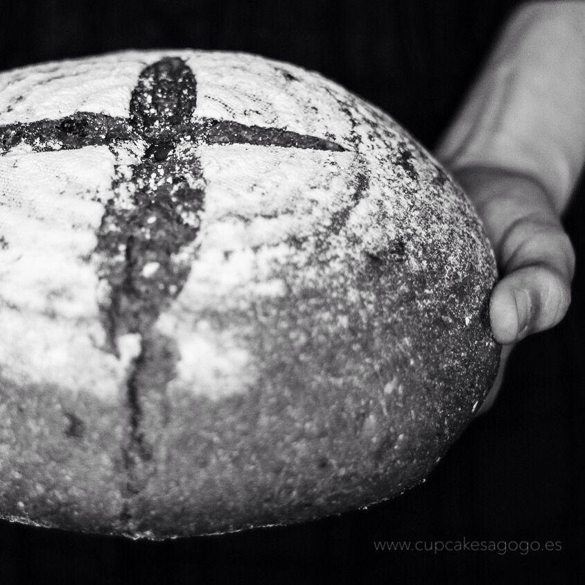 Centeno, espelta y trigo integral