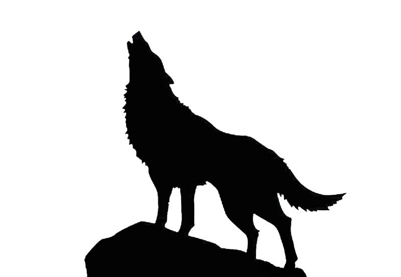 Wolf Forrest Moon AIRRUSH Painting Wall Art Stencil