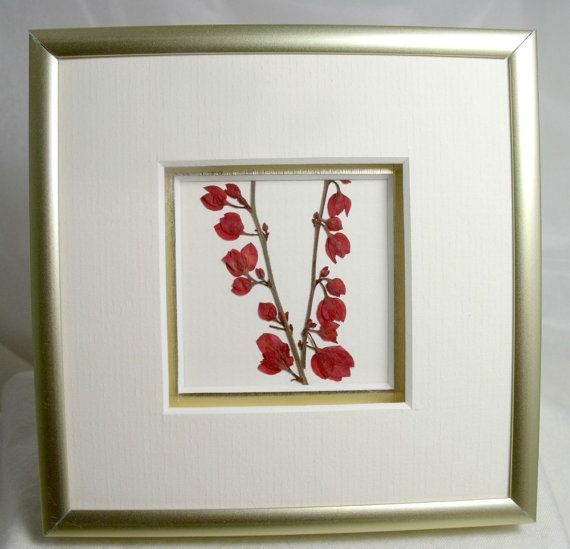 framed pressed flowers  miniframe ready to hang by sayitwithblooms, $40.00