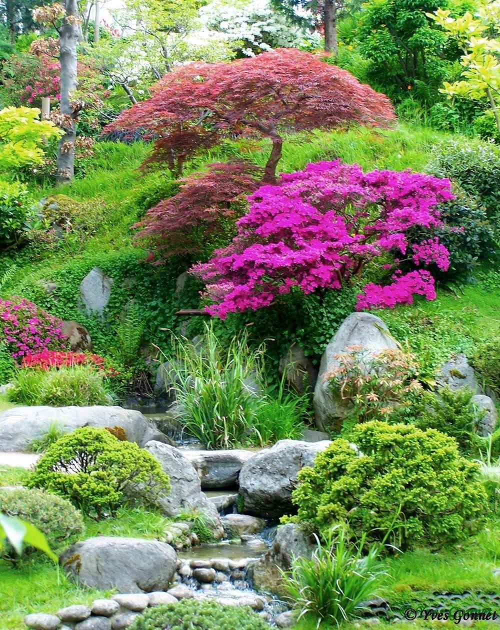 Albert Kahn Musee Et Jardins Boulogne Billancourt Ile De France Chinesischer Garten Kleiner Japanischer Garten Japanischer Garten