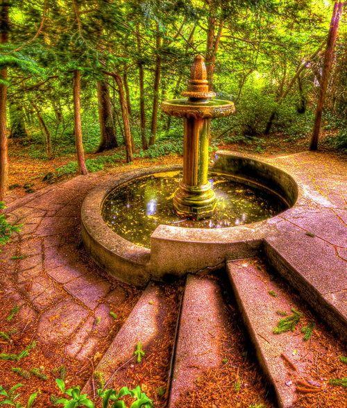 Superieur Garden Fountain  The Stuff Of Dreams.