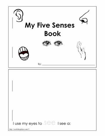 5 Sense Booklet Worksheets Five Senses Preschool Kindergarten Science Senses Preschool
