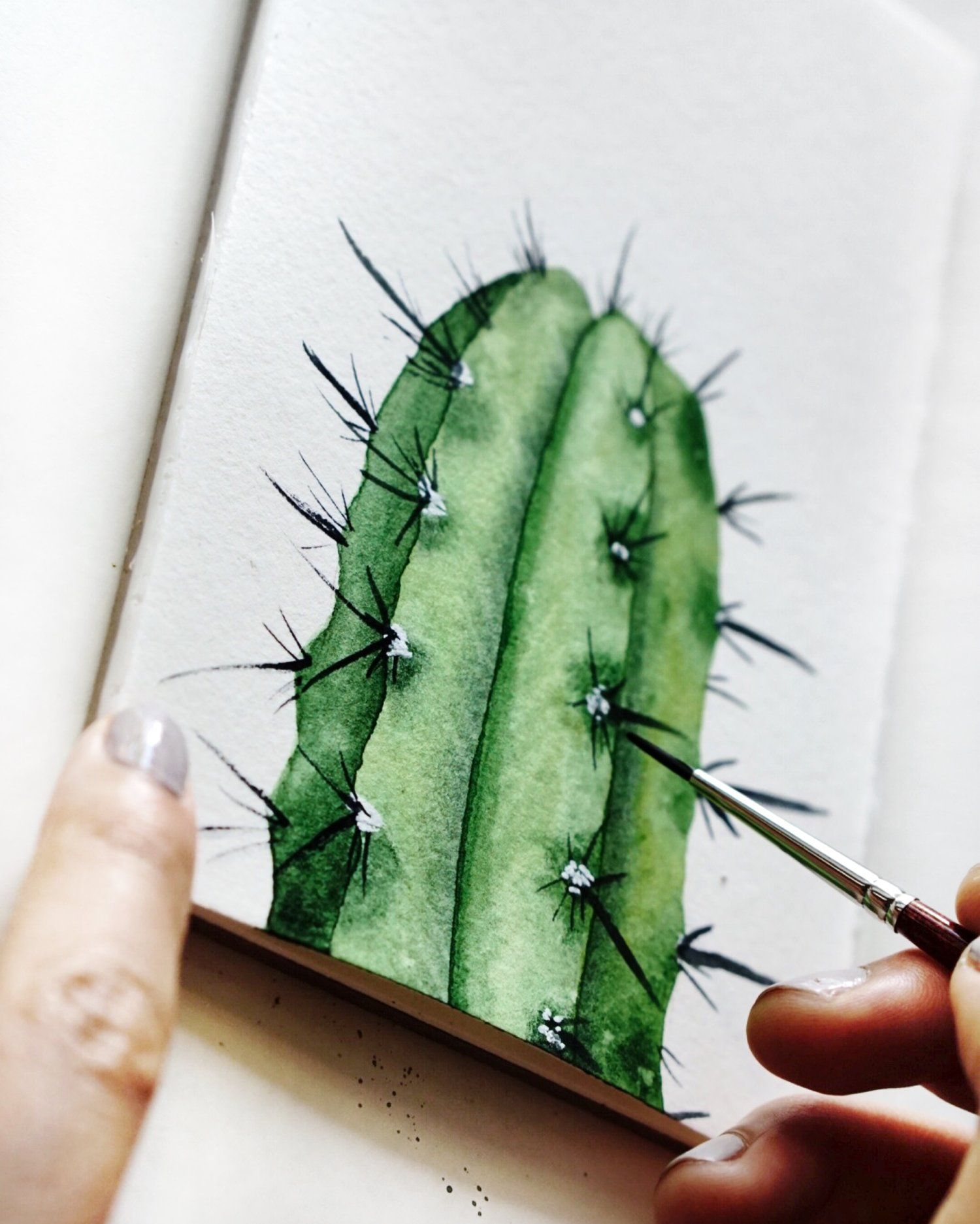 Watercolor Tutorial How To Paint Realistic Cactus Botanical