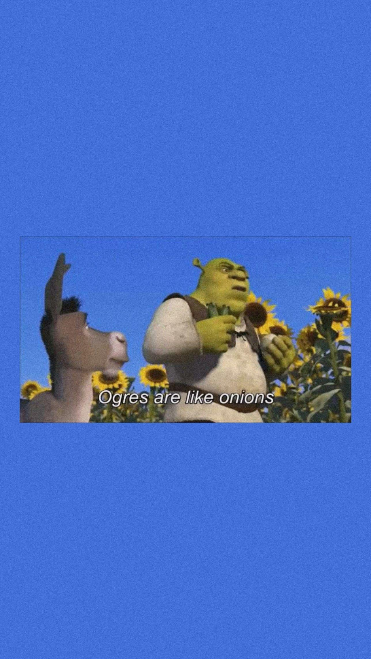 Shrek in 2020 Shrek, Funny wallpaper, Wallpaper