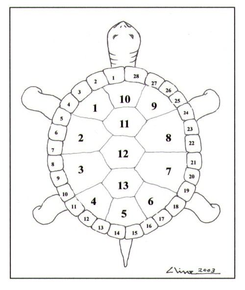 Thirteen Moons On A Turtles Back This Would Be Cool Tangled With