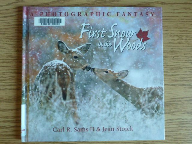 First snow in the woods : a photographic fantasy by Carl R Sams; Jean Stoick