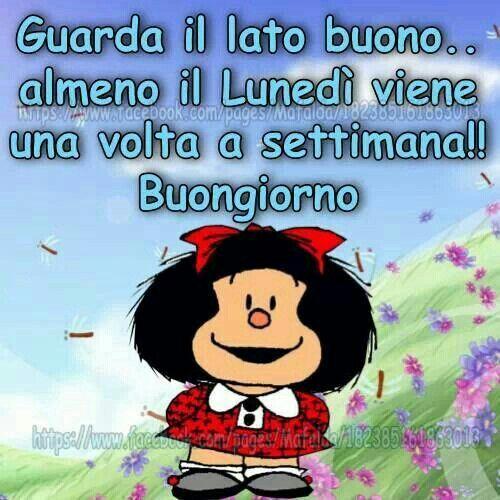 Buon Lunedi Lunedi Divertente Buongiorno E Buon Lunedi