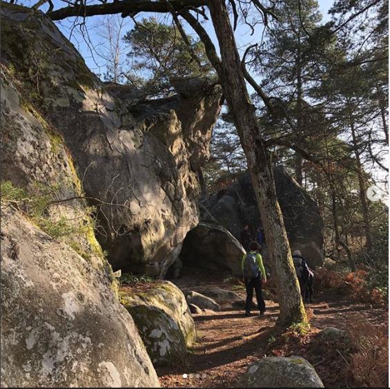 Foret De Fontainebleau Foret De Fontainebleau Randonnee Randonnee Pedestre