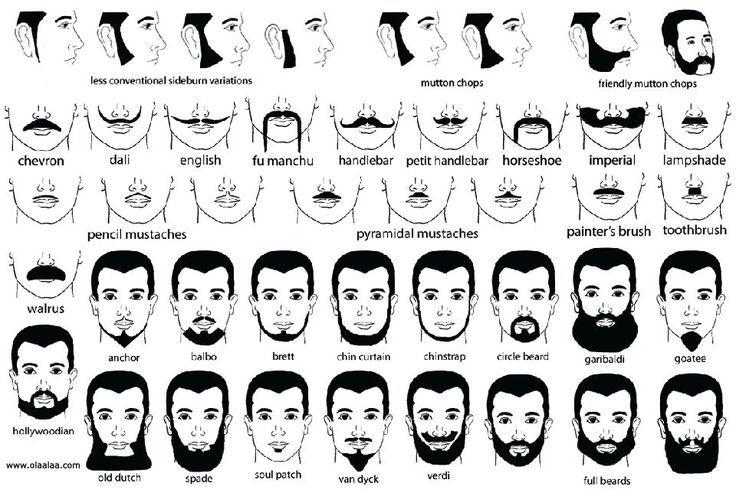 Moustache Styles Chart   Google Search