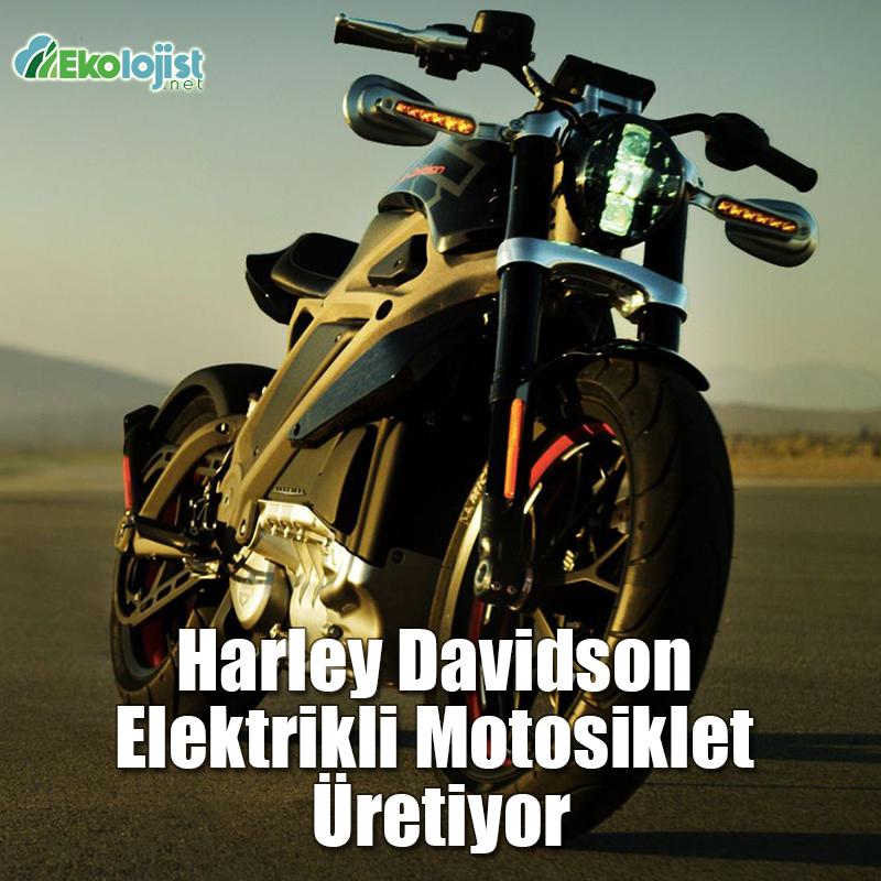 Harley Davidson Elektrikli Motosiklet Uretiyor Ekolojist Net Harley Davidson Motosikletler Ekoloji