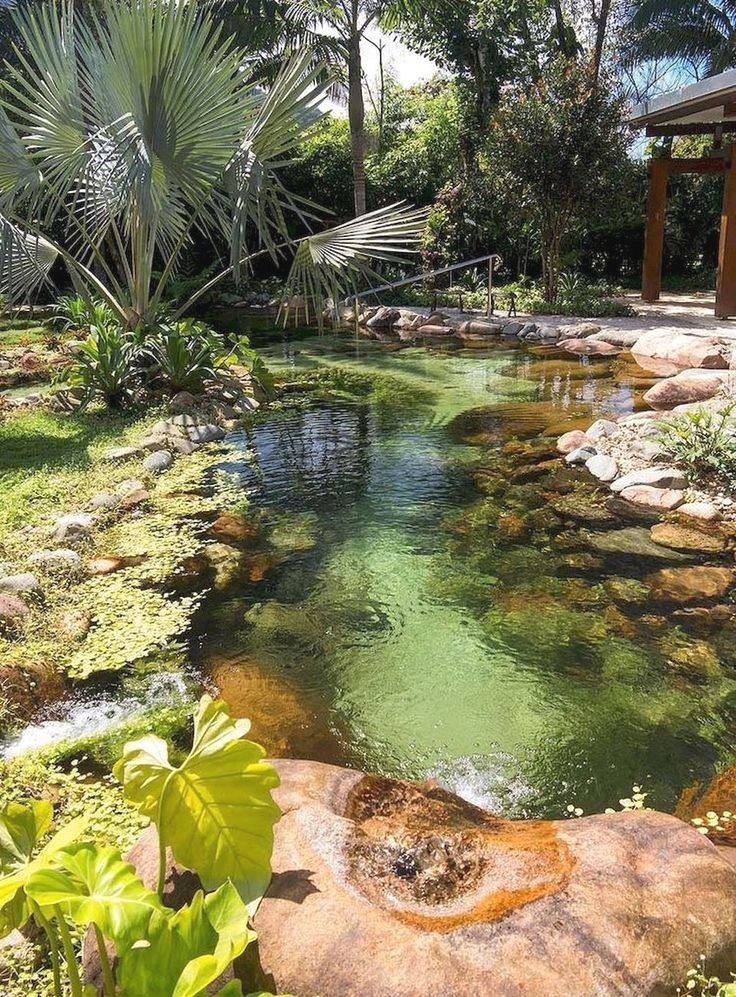 Installing An Outdoor Pond Or Water Hole Can Be A Simple Weekend Project Using A Kit From Your Local Nursery Or Pool Landscaping Pond Landscaping Natural Pool