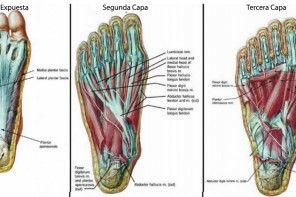 5 ejercicios para los pies que aliviarán el dolor de espalda, cadera y rodilla en menos de 20 minutos