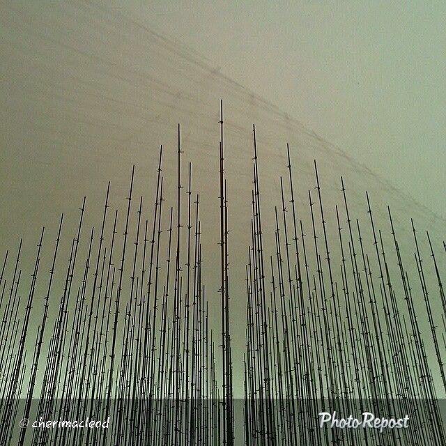 Our #QF photo of the day was taken by cherimacleod at #mathaf صورتنا لليوم على#انستقرام هي بعدسة cherimacleod في متحف: المتحف العربي للفن الحديث