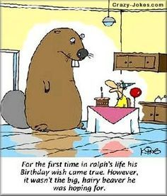 Big Hairy Beaver