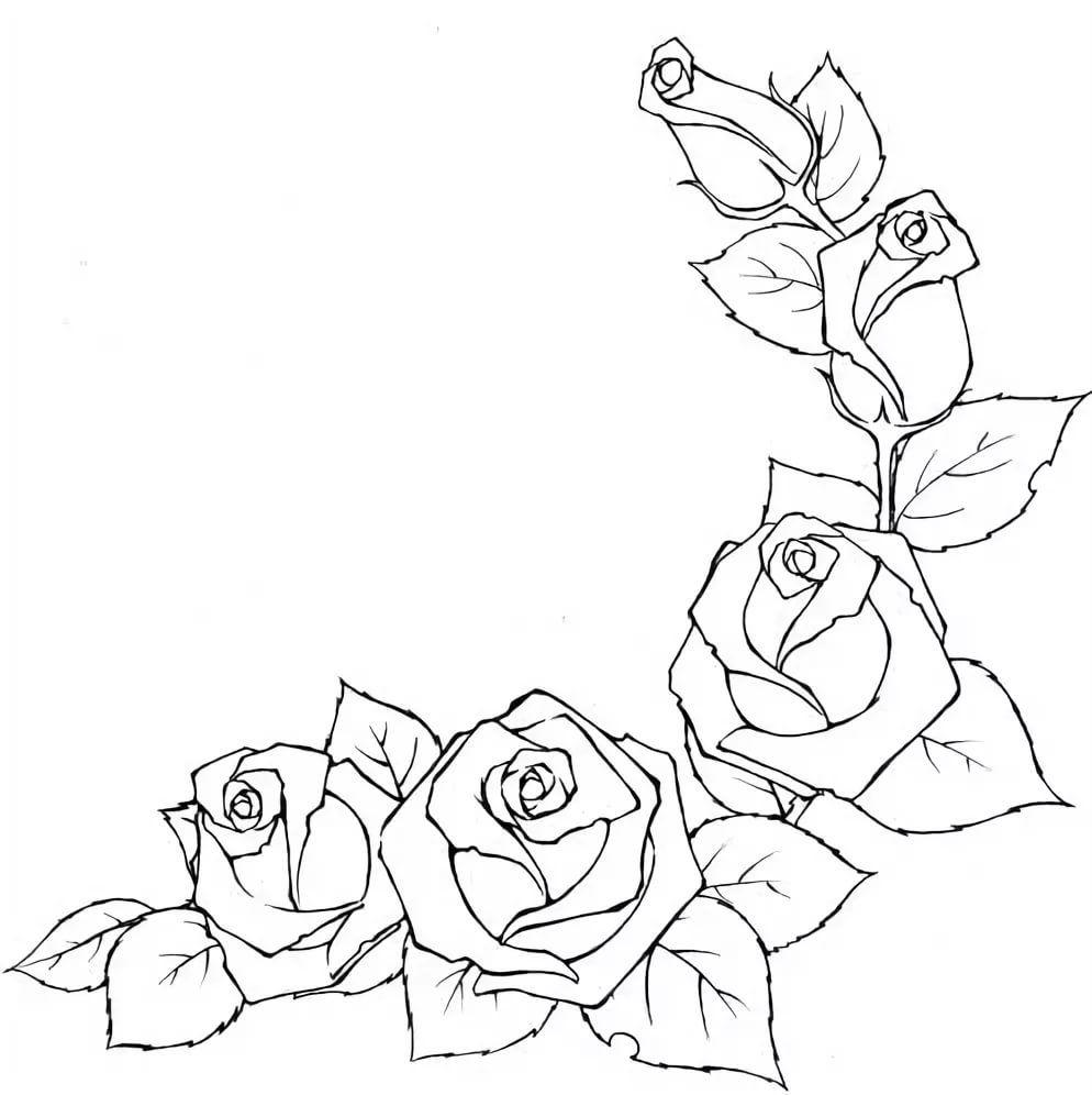 Рисунки цветов карандашом на открытку ней
