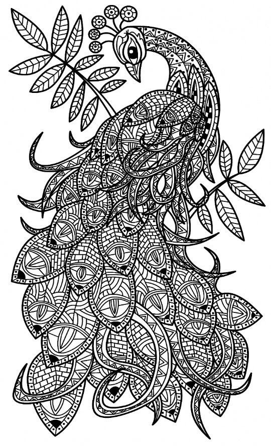 free printable peackoxk mosaic art coloring pages | Pin by Kelli Mount on Art | Peacock coloring pages ...