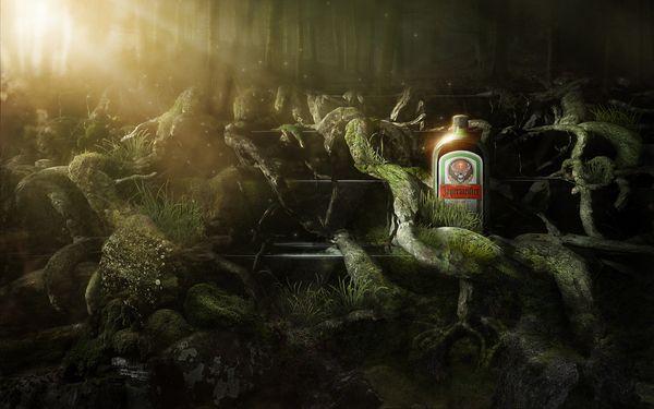 Jägermeister Wallpaper - Forest