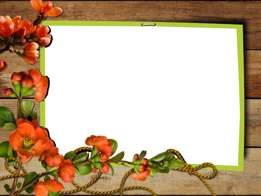 Spring Png Frame Paper Background Frame Small Frame