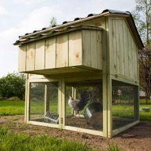 Designer Hühnerstall hühnerstall mit freilauf 3 hühner esschert tierchen