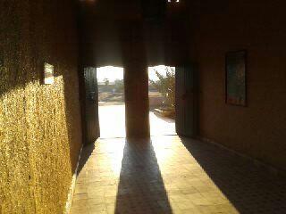 Me falto un minuto para pillar al sol llamando a la puerta, siempre se levanta el primero.