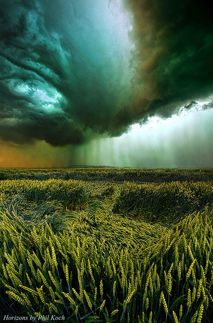 Phil Koch Against the Wind