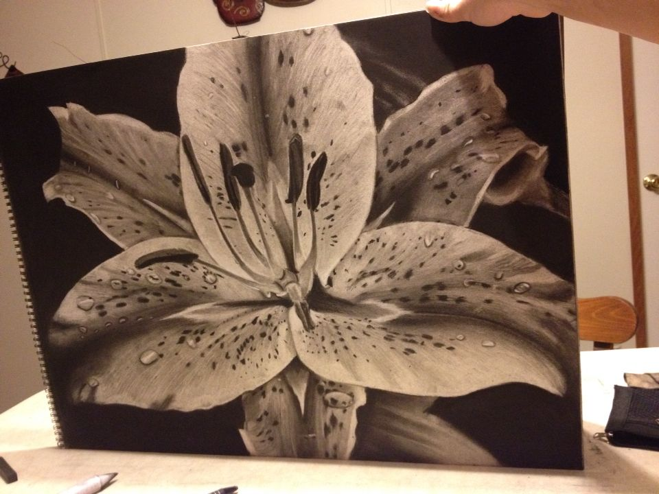 Charcoal stargazer lily... could do in pen with stippling....