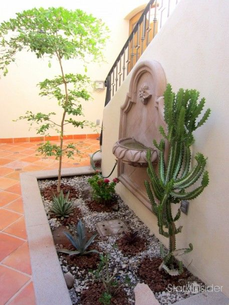 ideas for a desert courtyard garden
