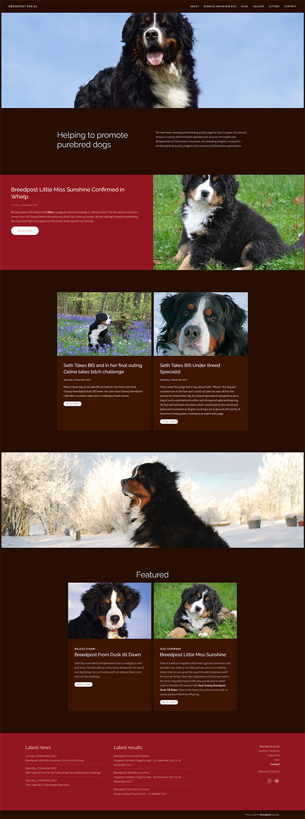 Dog breeder and show dog web design template. | Breedpost website ...