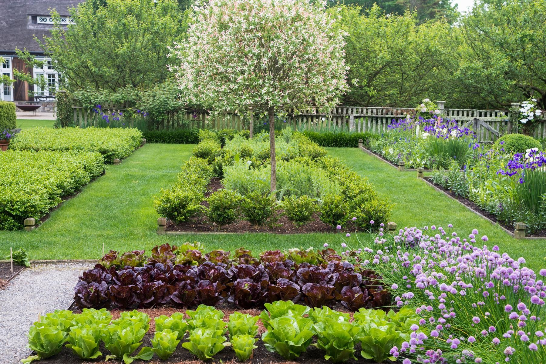 Ina Garten S Gardens Backyard Vegetable Gardens Hampton Garden Vegetable Garden Design