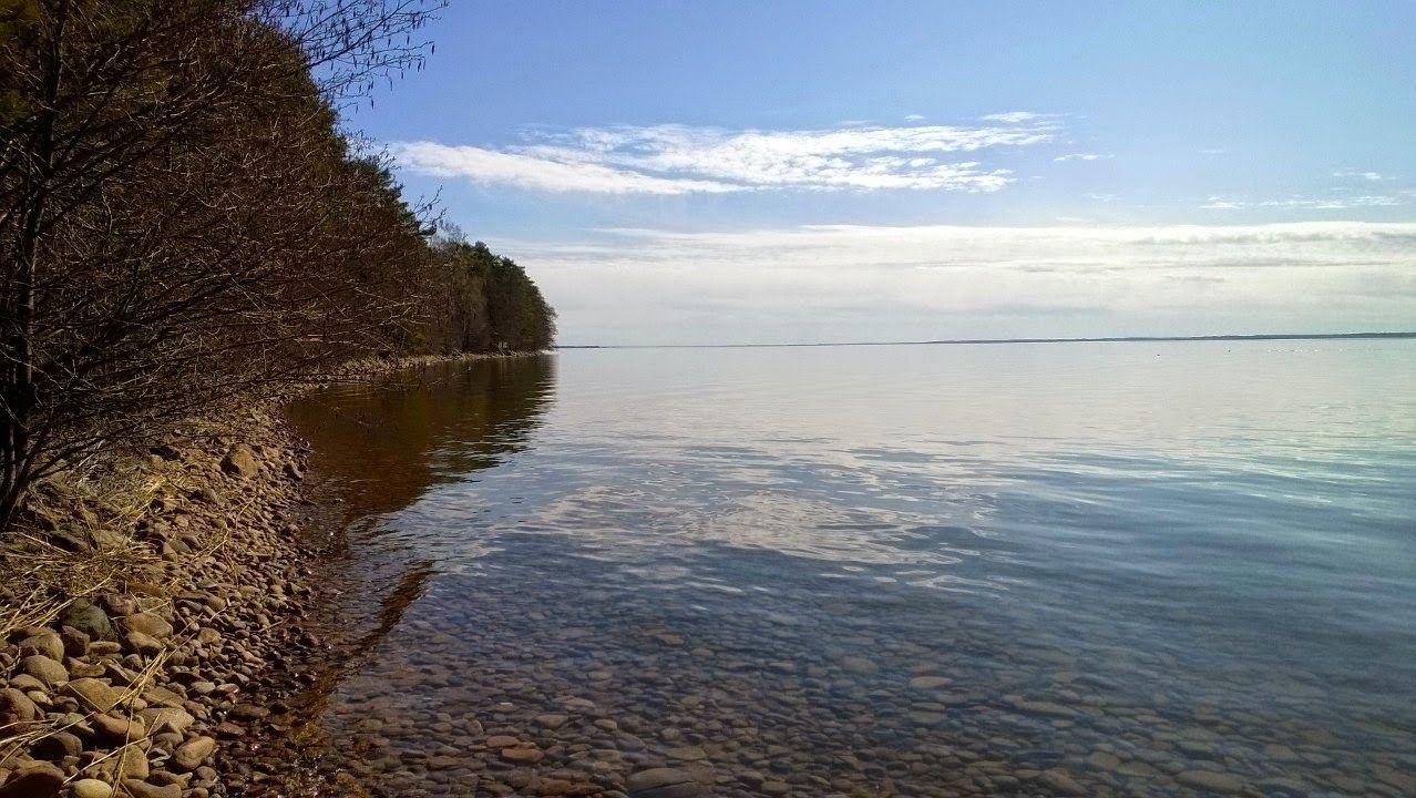 FishEye: Fishing blogs