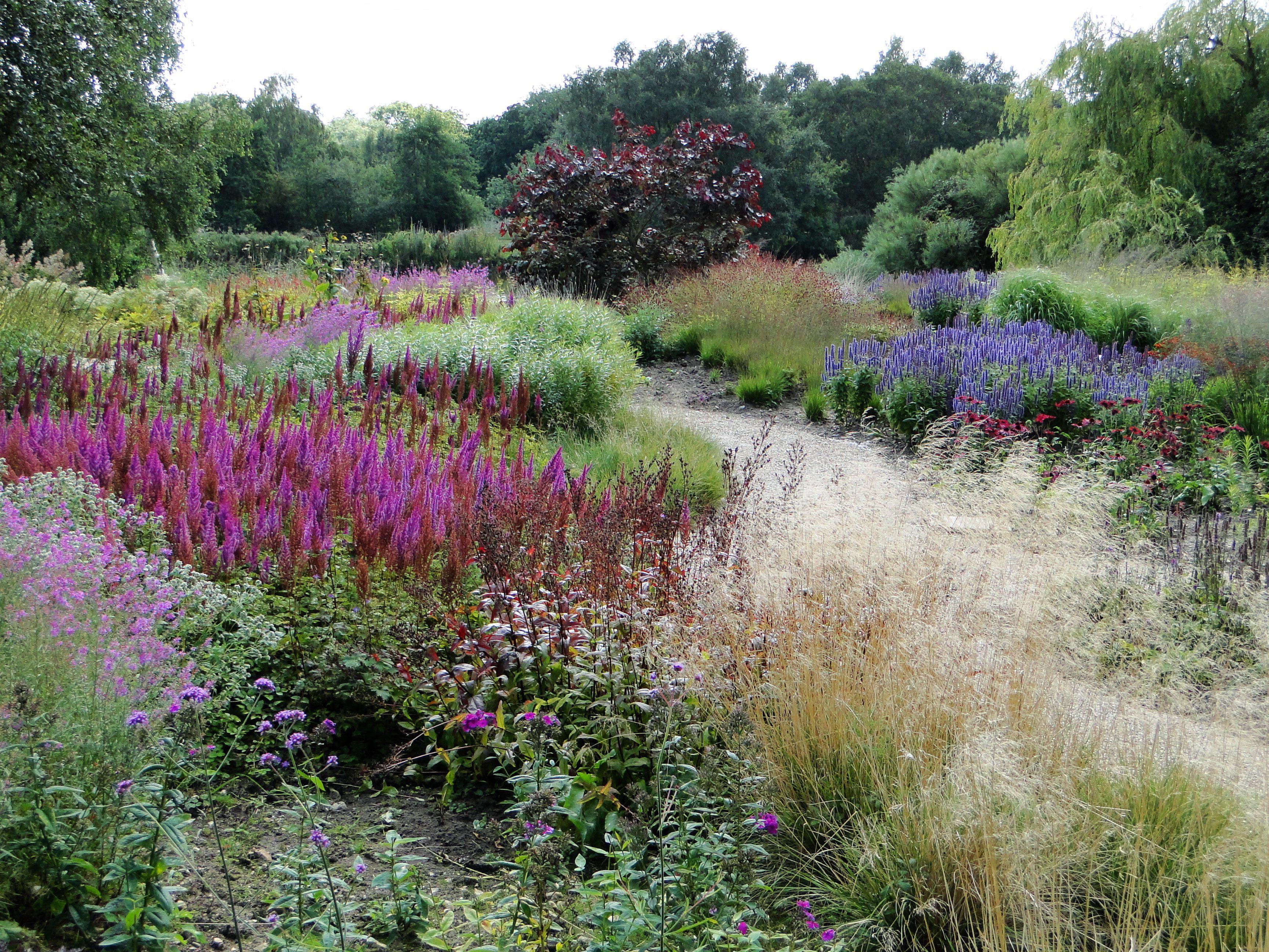 Painting With Plants Landscape Architecture Pinterest