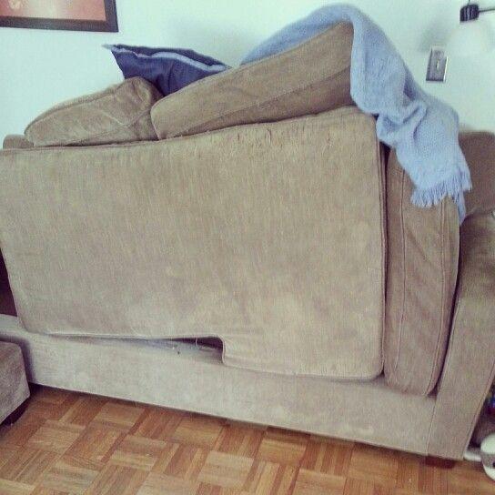 Makeshift sofa Modern Living Room