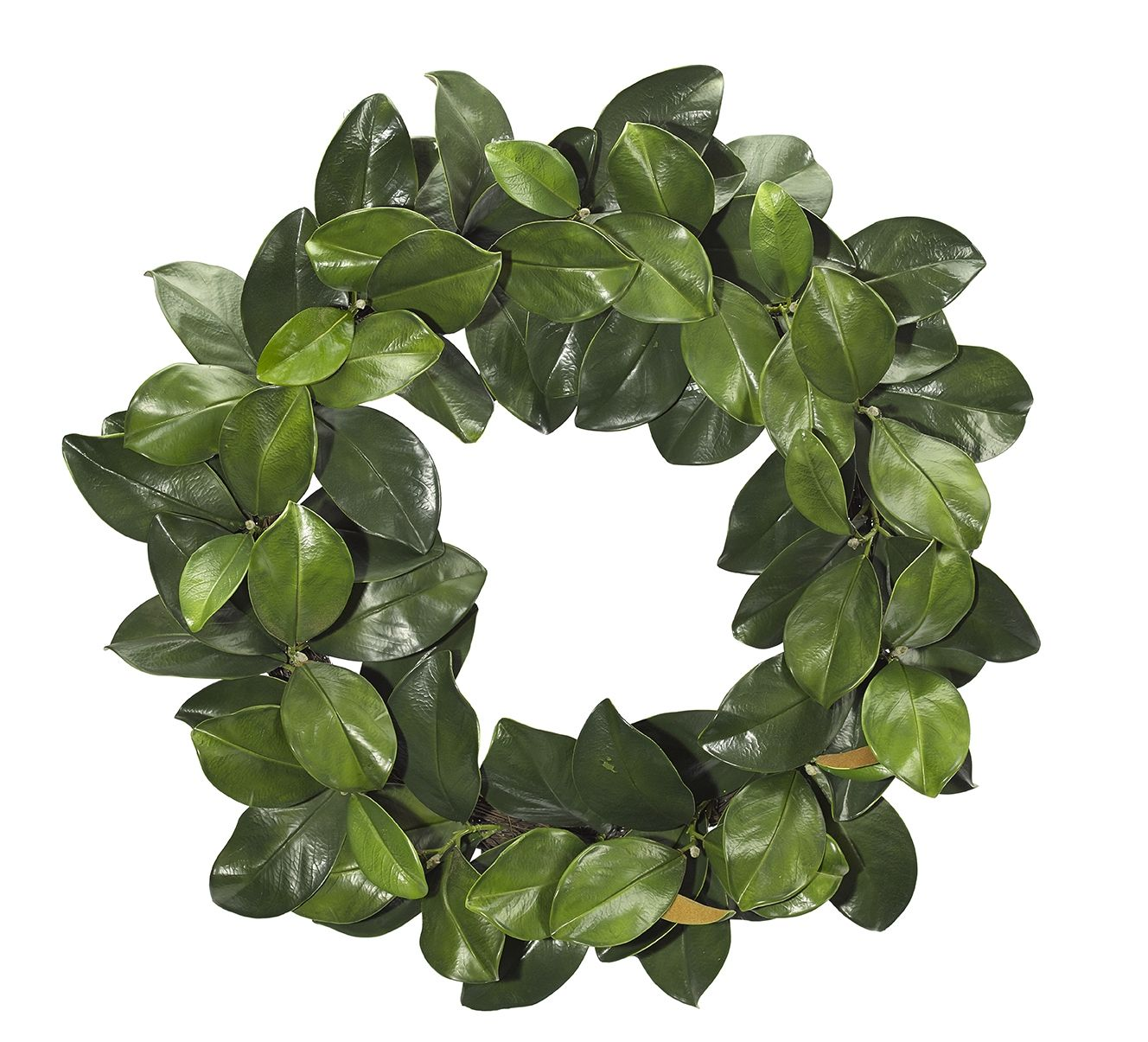 "Magnolia Wreath 34"" (GWP04): Magnolia Wreath, 34"""