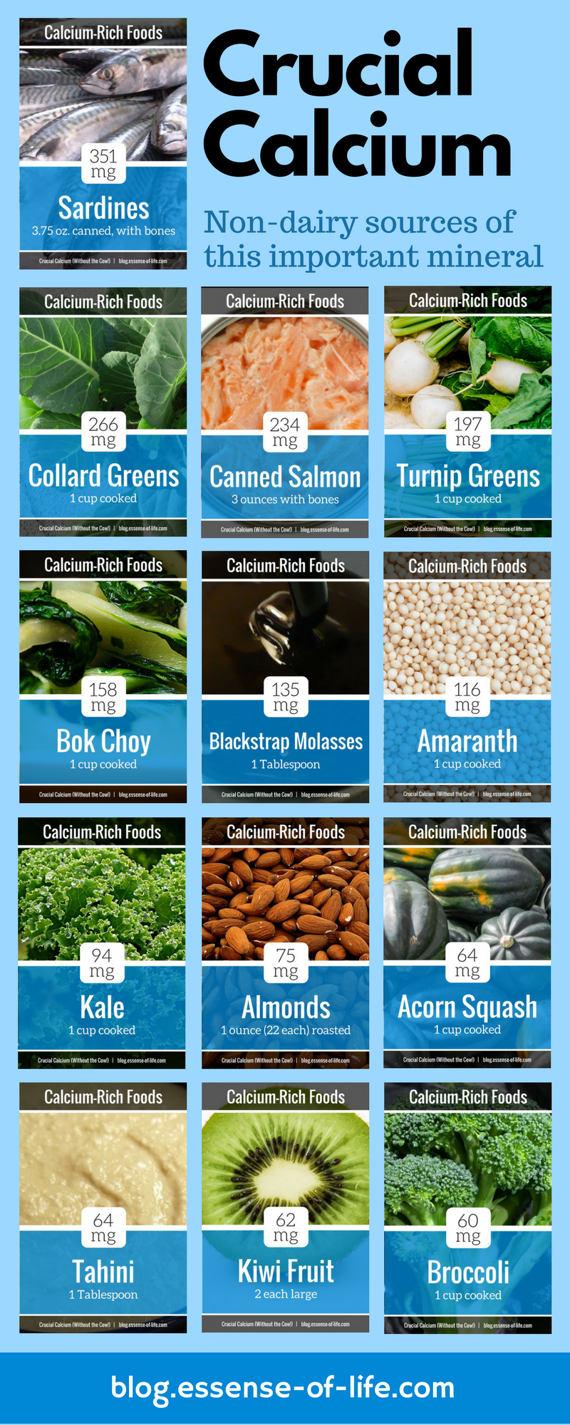Crucial Calcium Without The Cow 13 Dairy Free Ways To Get More Calcium Your Diet The Essential Health Blog Foods With Calcium Calcium Rich Foods Best Diets