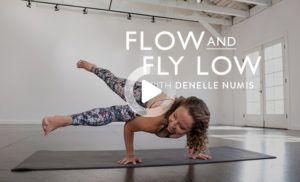 flow  fly low 10minute yoga class with denelle numis in