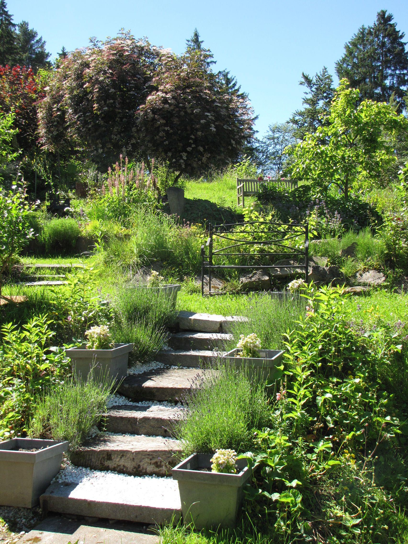 Paradiesgarten Maag Im Allgau Design Garten Von Sibylle K Maag Www Paradiesgarten Eu Garten Allgau Paradiesgarten Garten Paradies Bilder